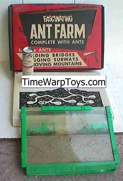 The Ant Farm S Reading Room