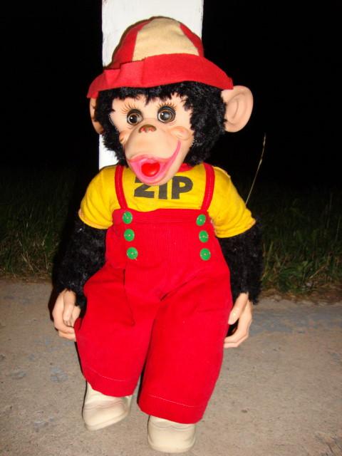 Zippy The Monkey